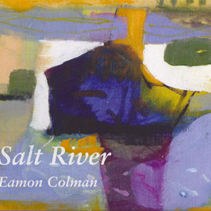 Salt River: Exhibition Brochure Eamon Colman Hillsboro Gallery 2006