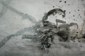 Octopus Drawing 1 by Eamon Colman