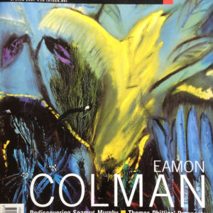 Irish Art Review Spring 2007 cover